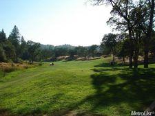 13072 Austin Forest Cir, Auburn, CA 95602