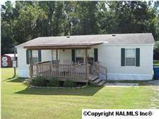 1855 Welcome Home Church Rd, Horton, AL 35980