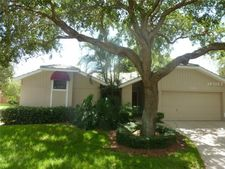 513 Moreno Cir Ne, St Petersburg, FL 33703