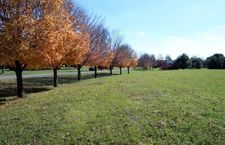 A & B Hackberry Rd Lot 710, Cecilia, KY 42724