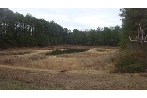 Rays Bridge Rd, Whispering Pines, NC 28327