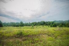 County Road 19, Ariton, AL 36311