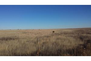 Golondrina Ave, McIntosh, NM 87032