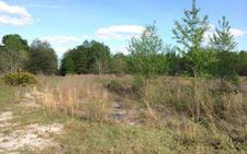 Lot 1 Sw Watson Rd, Fort White, FL 32038