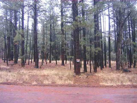 Photo of 5532 Forest Dr, Pinedale, AZ 85934