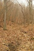 4315 30 Acres Sand Bank Dr, Boonville, MO 65237