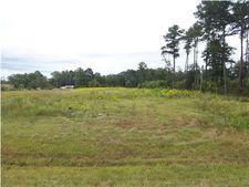 Highway 43, Mount Vernon, AL 36560