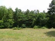 3.6 Acres Robin Parker Rd, Ozark, AL 36360