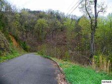 Lot 113 Bluff Ridge Rd, Sevierville, TN 37876
