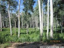 3831 S Badger Ct, Timber Lakes, UT 84032