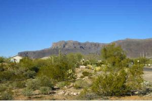 N Kings Ranch Rd, Gold Canyon, AZ 85218