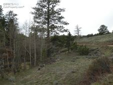 307 Beartrap Rd, Red Feather Lakes, CO 80545