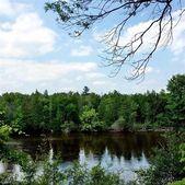 River Rd, Evart, MI 49631