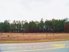 Brown Rd, Butler, GA 31010