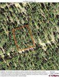 101 Pine Crest Dr, Bayfield, CO 81122