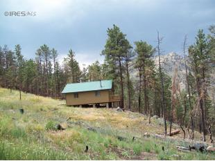 889 Unger Mountain Rd, Bellvue, CO 80512