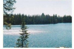 NE Lake Five Ln, Kalkaska, MI 49646