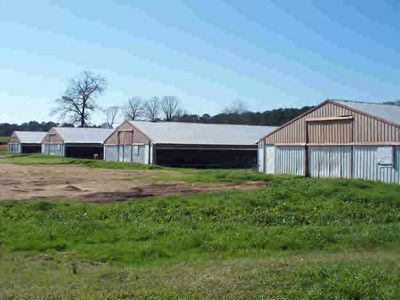 6232 Reeves Rd, Smithdale, MS