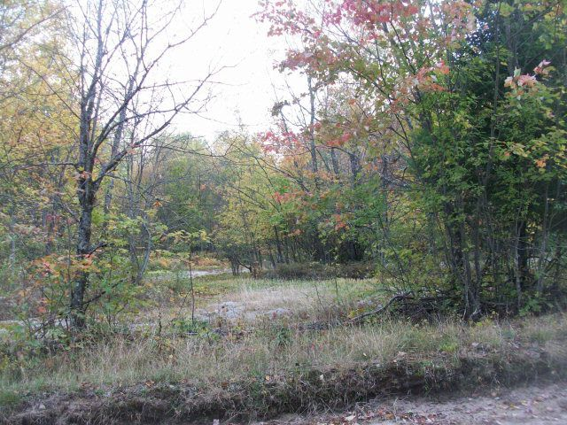 Clookey or Hutchins Rd Lot 2 Dickinson Center, NY 12930