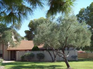 Photo of 17609 N 45th Ave, Glendale, AZ 85308