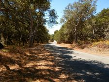 14701 Tumble Weed Ln, Royal Oaks, CA 95076