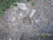 Lone Larch Dr Unit 41, Wolf Creek, MT 59648