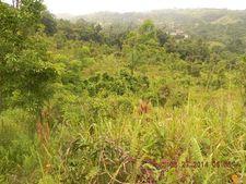 Km 8.7 Guzman Arriba Road 956, Rio Grande, PR 00745