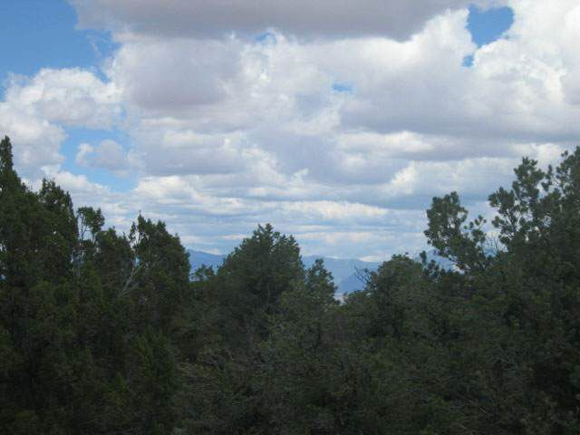Forest Service Rd # 556, Carson, NM