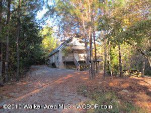205 Wilderness Ln, Double Springs, AL 35553