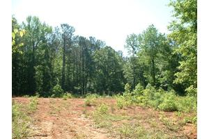Wonderful Lot Adjacent Lake Harding w/Creek Access