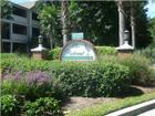 1025 Riverland Woods Pl Apt 1013, Charleston, SC 29412