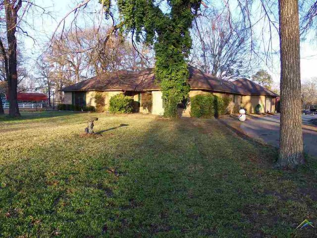 322 county road 3120 quitman tx 75783 home for sale and real estate listing