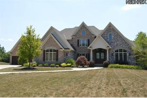 24755 Eagle Pointe, Columbia Station, OH 44028