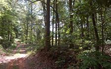 Rocky Ford Rd, Turtletown, TN 37317