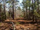Lot 19 Lake Gladewater Road, Gladewater, TX 75647