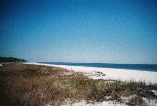 1704 Carrabelle Beach Dr Fl 32322