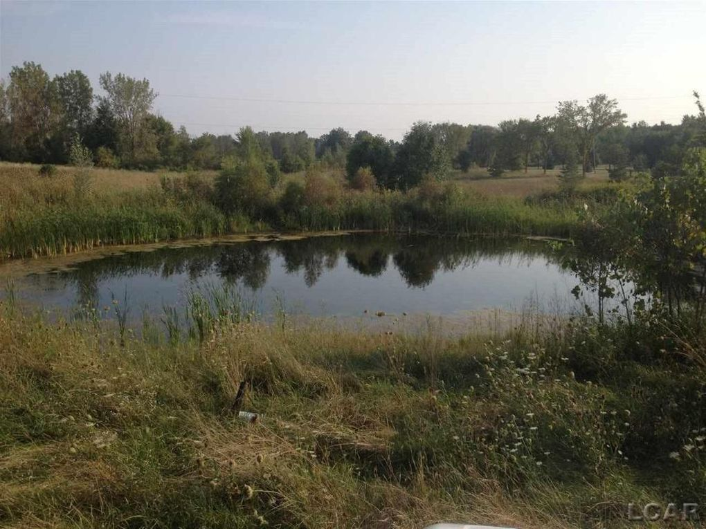 Homes For Sale On Springville Hwy Onsted Mi