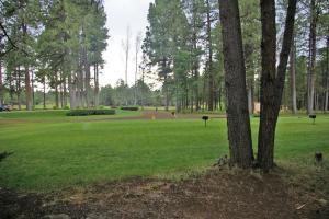 Photo of 2980 Sportsman Cir, Pinetop, AZ 85935