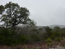 Canyon Mist, Grey Forest, TX 78023