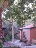 5366 N Calle Del Rocio, Tucson, AZ 85750