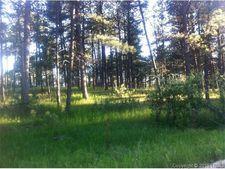 Juniper Dr, Black Forest, CO 80908