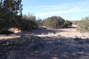 Lot 545 Big Valley Rnch, Sanders, AZ 86512