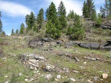 Nine Mine, Laurier, WA 99146