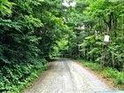 Whitaker Farms Road, Norton, VA 24273