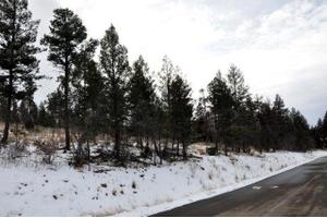 221 Cummings Dr # 1, Ruidoso, NM 88345