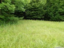 Carney Hollow Rd, Springwater, NY 14560