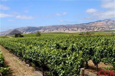 2060 Biddle Ranch Rd San Luis Obispo Ca 93401 Realtor Com