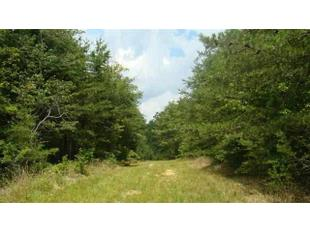 442+/-Acres Back Valley Rd, Dayton, TN 37321