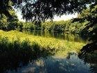 Lake Cecil Road, Masonville, NY 13804