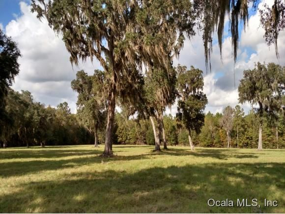 w highway 318 reddick fl 32686 home for sale and real